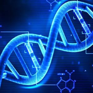 遺伝子,dna,検査,ダイエット,ジム,アラフォー,アラフィフ,ワトリック,世田谷,駒沢,恵比寿