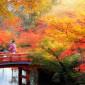 京都,パーソナル,トレーニング,ダイエット,ジム,プライベート,マンツーマン,おすすめ