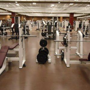 運動,トレーニング,プログラム,効果,食事