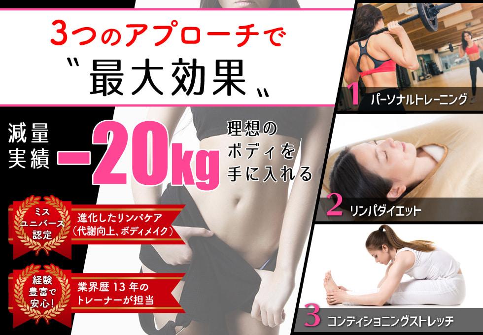 Body リフレクションのサムネイル画像