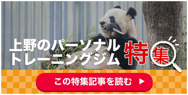 上野・浅草・御徒町のダイエットジム・パーソナルトレーニングの問い合わせボタン