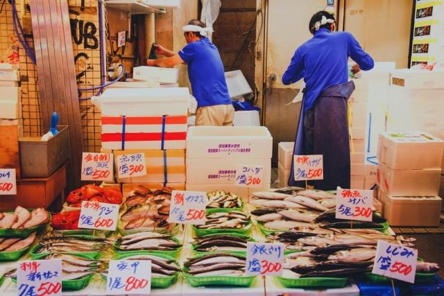 魚 ダイエット